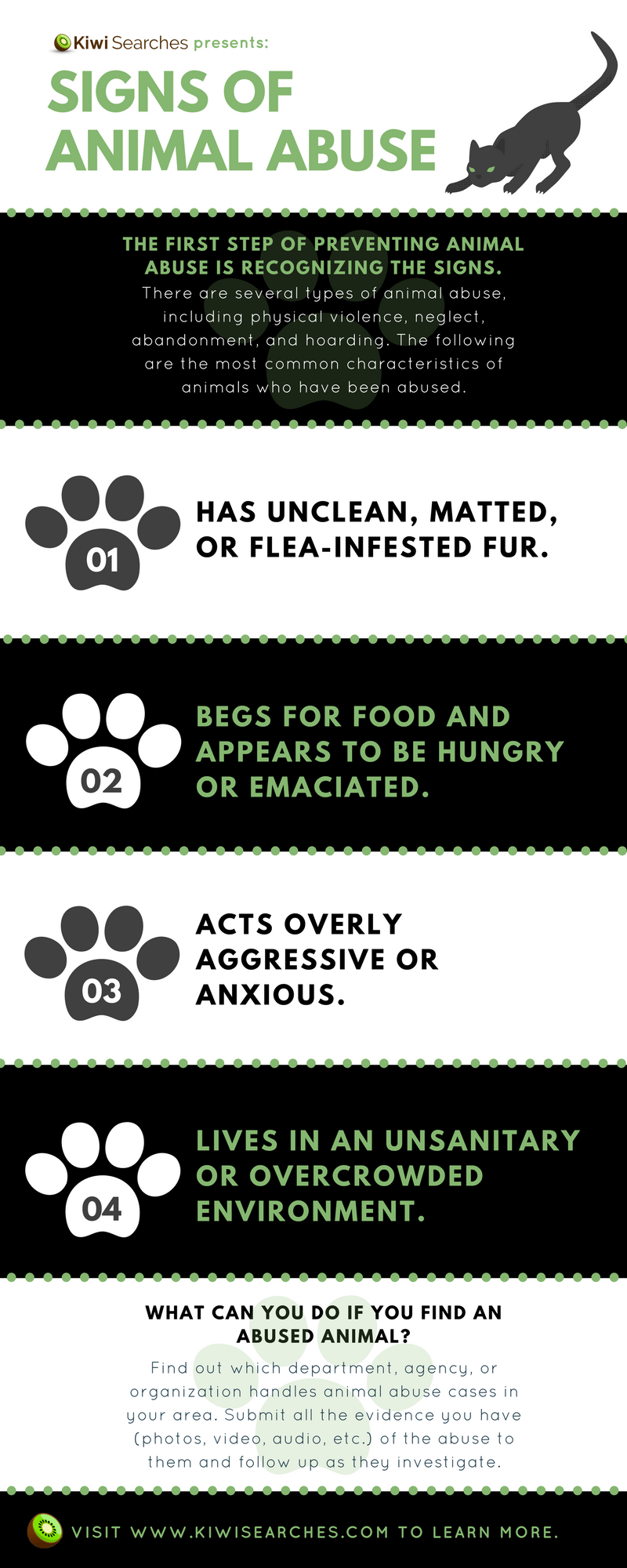 What You Need To Know About Animal Abuse And How To Report It Infographic