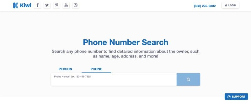 What information does Kiwi Searches check service provide?